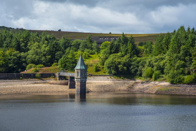Chris Thaxter | Pontsticill Reservoir August 2018