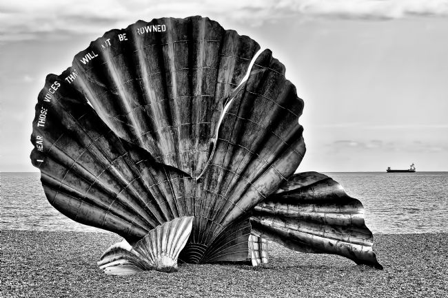 Chris Thaxter | Aldeburgh Shell