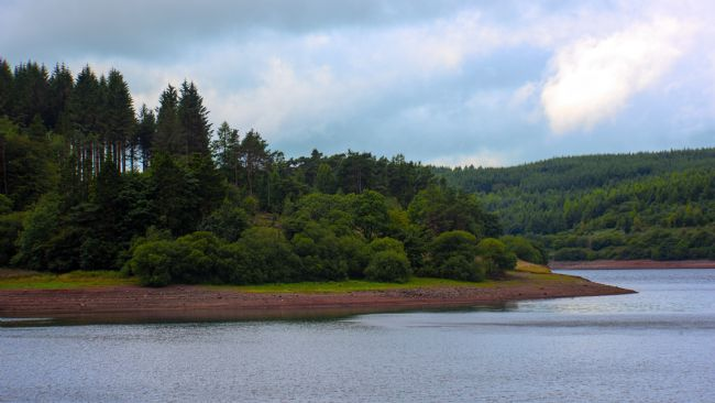 Chris Thaxter | Usk Reservoir 2