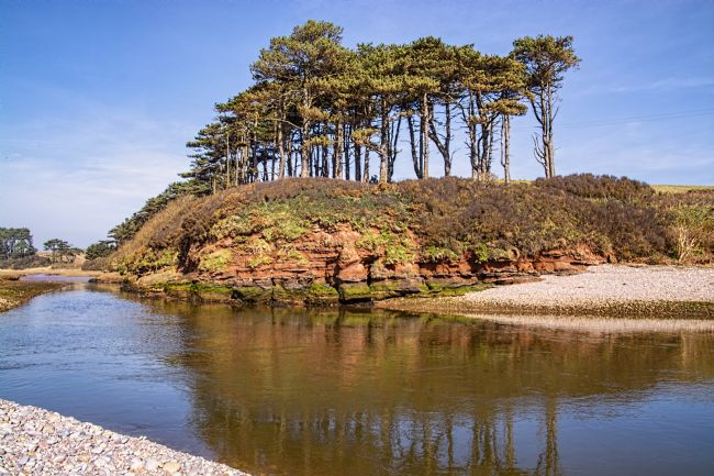 Chris Thaxter | Dragons Back Budleigh Salterton