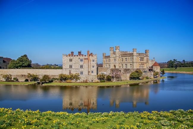 Chris Thaxter | Daffodils at Leeds Castle
