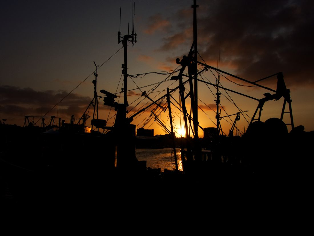 Chris Day | Sutton Harbour Sunset