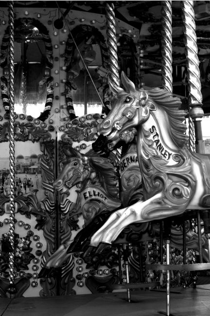 Chris Day | Carousel in black and white