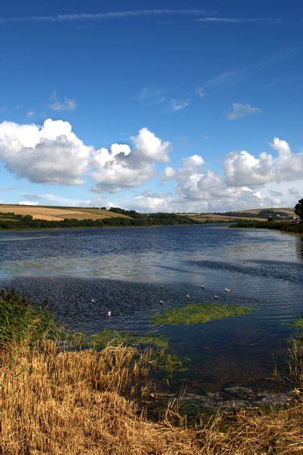Chris Day | Slapton Ley