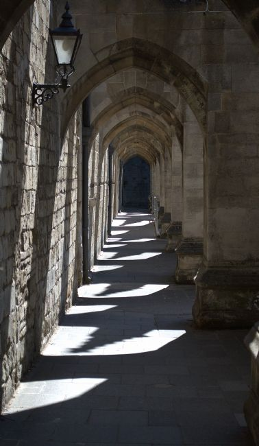 Chris Day | Winchester Cathedral Cloisters of the Inner close