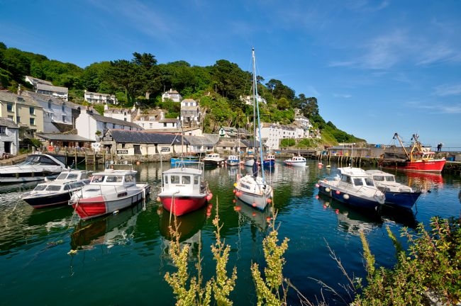 Rosie Spooner | Colourful Reflections at Polperro Harbour