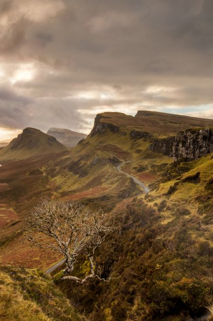 Karl Thompson | QUIRAING TREE, SKYE