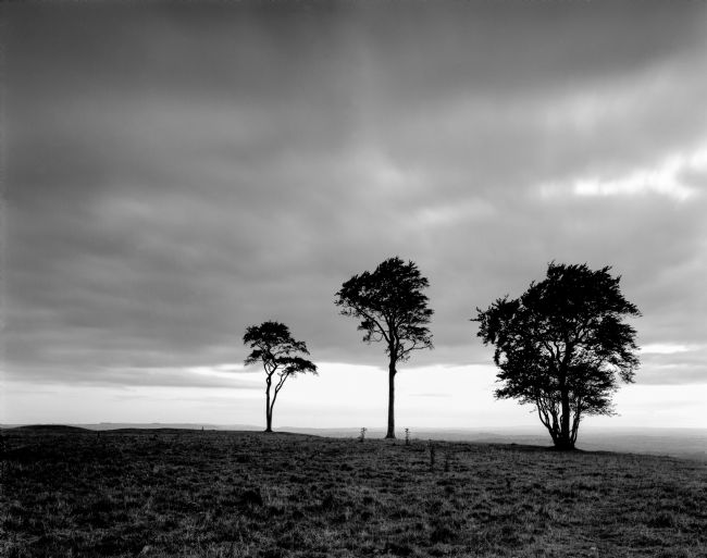 Karl Thompson | Roundway Hill Fort