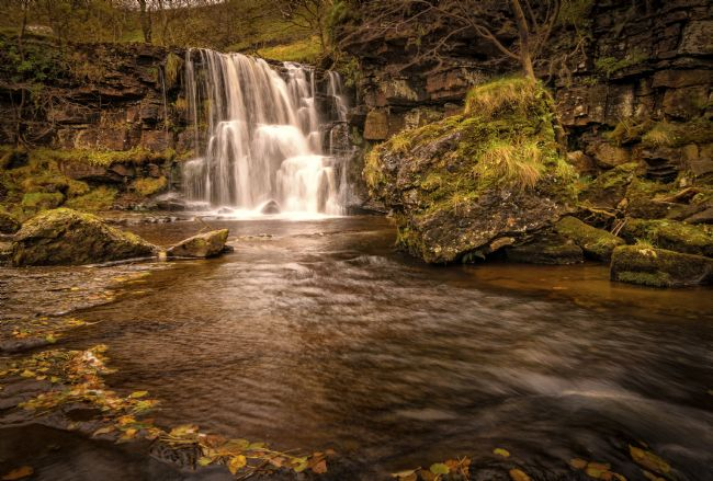 David Brookens | East Gill Force