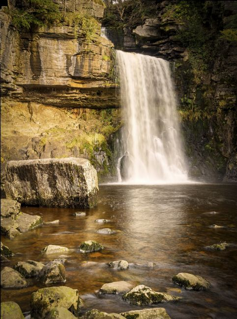 David Brookens | Thornton Force