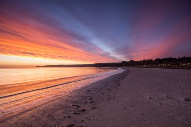 Phil Wareham | Studland Dawn