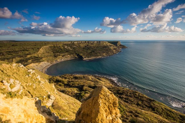 Phil Wareham | Jurassic Coast