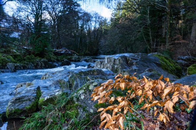 Phil Wareham | Betws -y-Coed