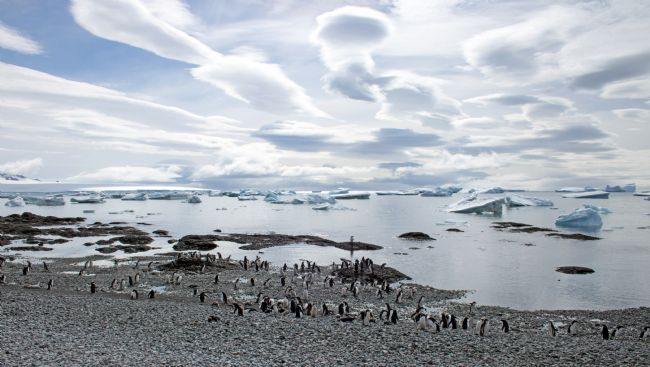 Hazel Wright | Spectacular clouds and penguins