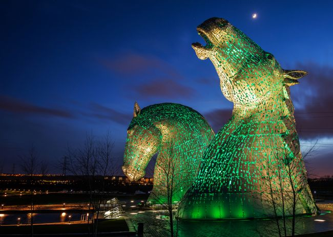 Pam Sargeant | The Green Kelpies