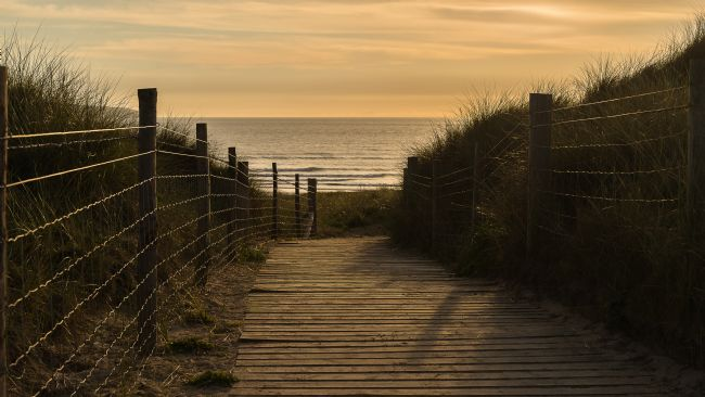 Pam Sargeant | Boardwalk