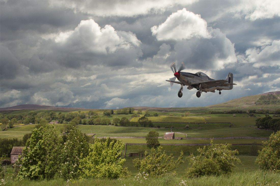 pauline tims | Stormy Landing Mustang P 51 D
