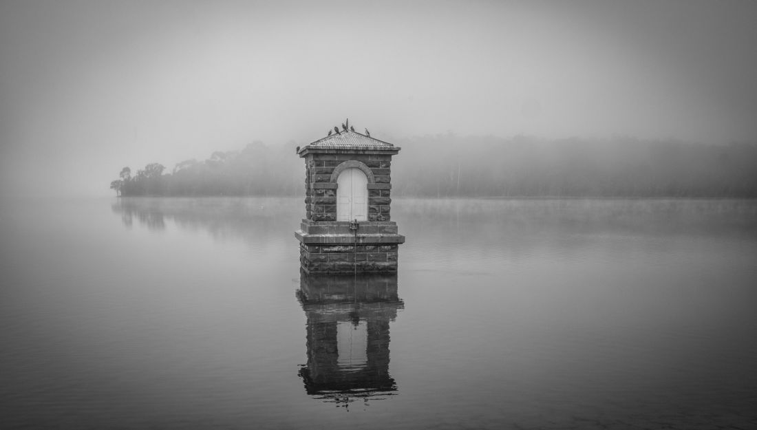 pauline tims | Yan Yean Reservoir in the Autumn Mist