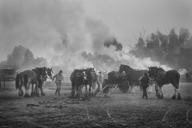 Pauline  Tims | Mist and Smoke at Echuca Steam Fair