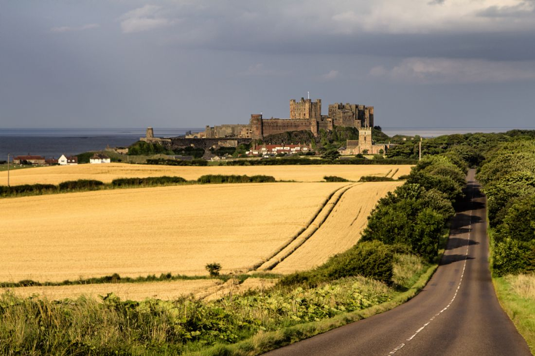 Daniel Dent | Bamburgh Castle and fields of gold