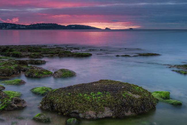 Tracey Yeo | Sunrise over Torquay.