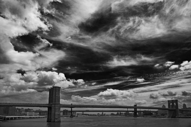 David Richardson | Brooklyn Bridge in Black and White