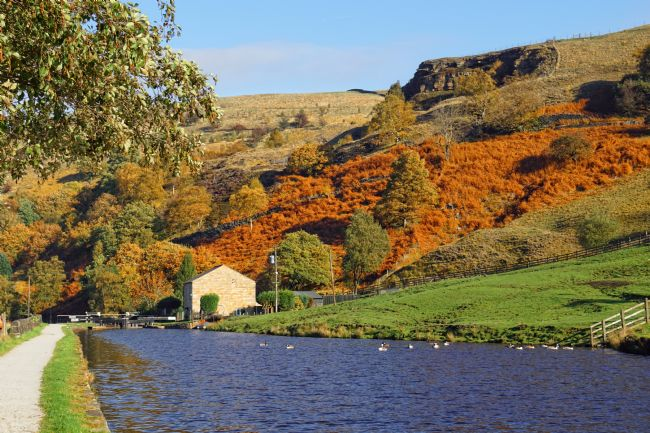 David Birchall | Autumn on Rochdale Canal at Summit.