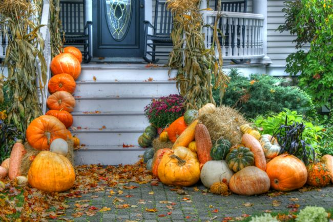 David Birchall | Pumpkins on the Porch