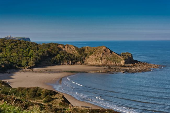 David Hollingworth | Cayton Bay