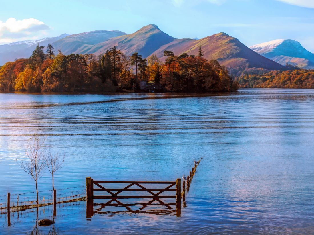 Susan Tinsley | Catbells in Autumn