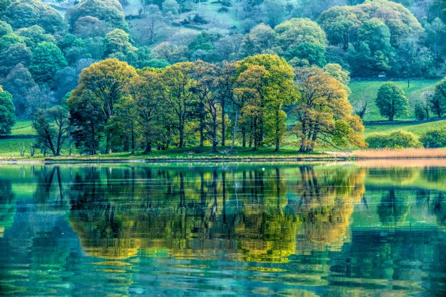 Susan Tinsley | Esthwaite Water