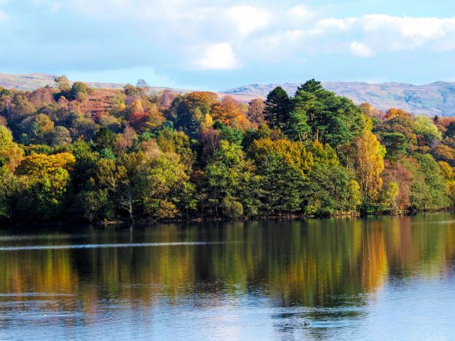 Susan Tinsley | Autumn at Grasmere