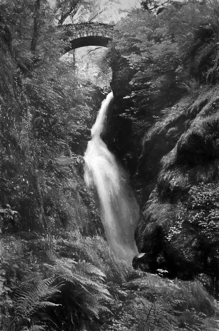 Ian Lewis | Aira Force Digital Art