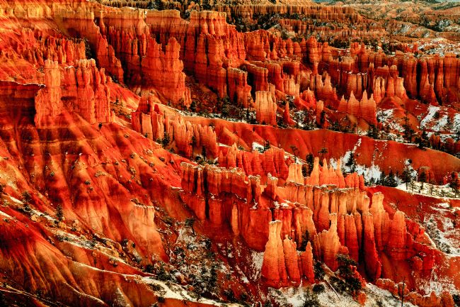 Peter O'Reilly | Hoodoos, Bryce Canyon National Park