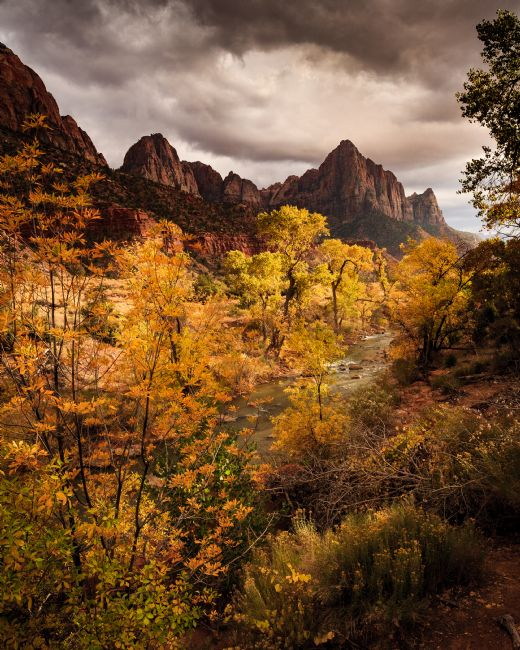 Peter O'Reilly | The Watchman, Zion National Park