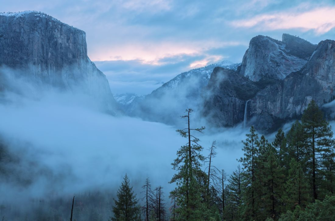 jonathan nguyen | tunnel view with fog