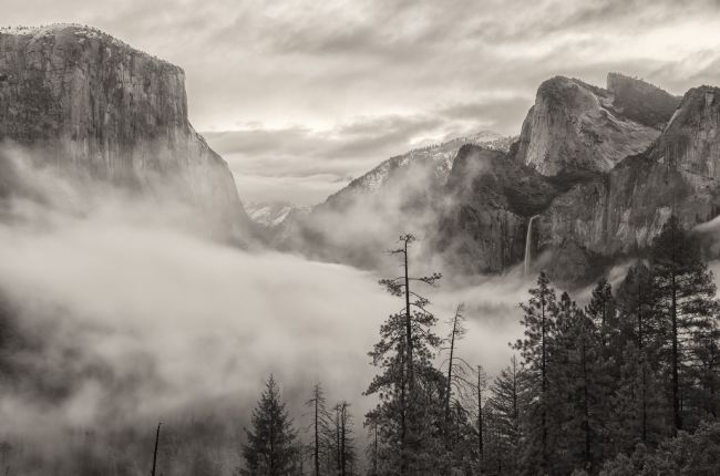 jonathan nguyen | tunnel view with fog - sepia