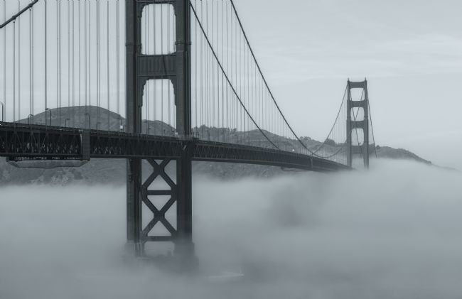 jonathan nguyen | Gate and Fog bw