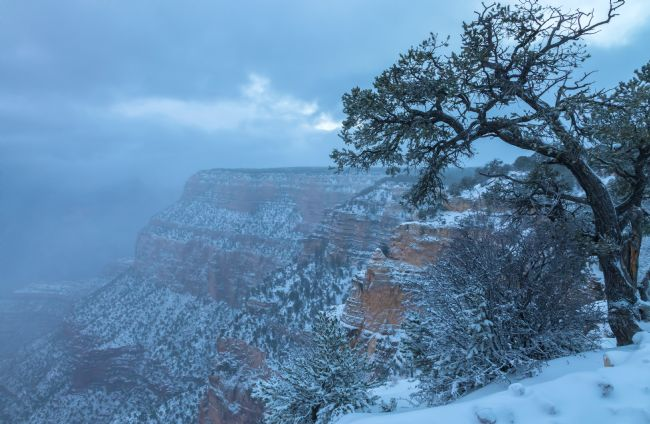 jonathan nguyen | Snow Storm At Grand Canyon