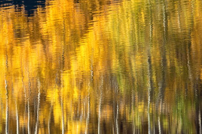 jonathan nguyen | fall water abstract