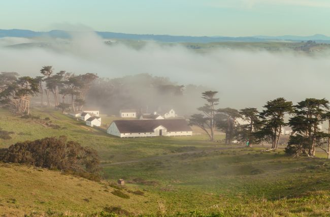 jonathan nguyen | fog over pierce point ranch