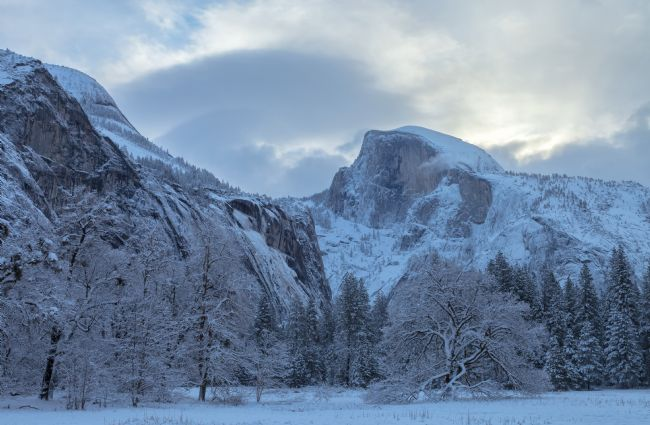 jonathan nguyen | Half Dome at Cook Meadow