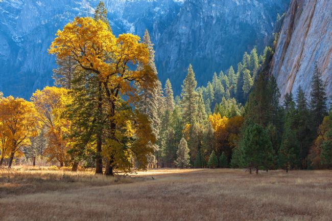 jonathan nguyen | yosemite valley fall