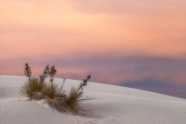jonathan nguyen | white sand at sunset