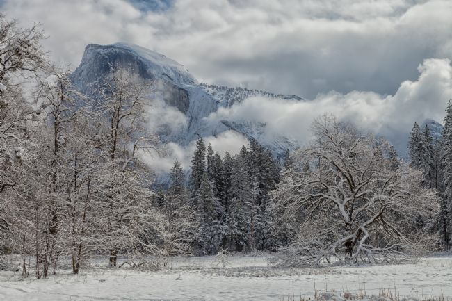 jonathan nguyen | Yosemite Winter