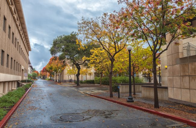 jonathan nguyen | Stanford in Autumn