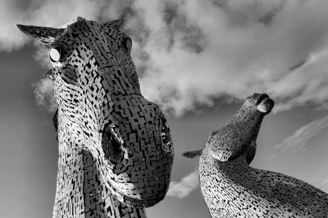 bill lighterness | Kelpies , Straight from the Horses Mouth