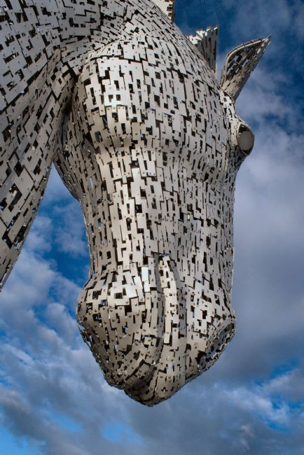 bill lighterness | Kelpies , Down in the Mouth
