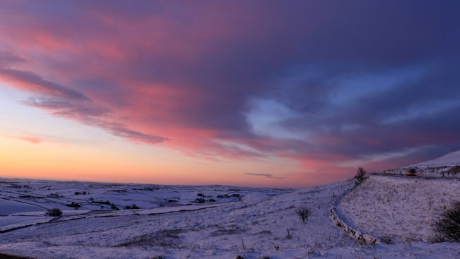 tammy mellor | winter sunrise