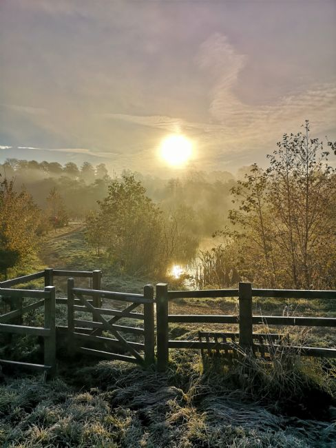 tammy mellor | frosty autumn morning